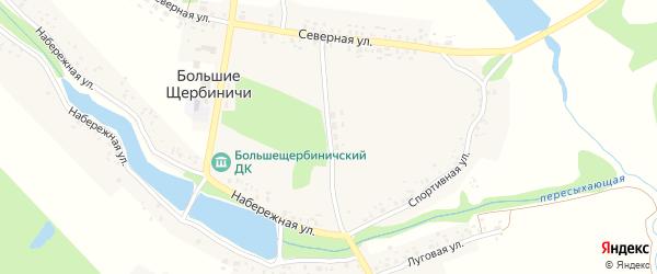 Молодежная улица на карте села Большие Щербиничи с номерами домов
