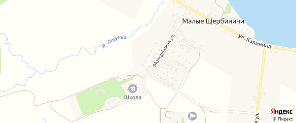Молодежный переулок на карте села Малые Щербиничи с номерами домов