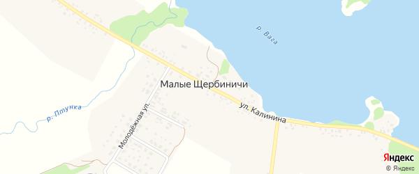 Улица Калинина на карте села Малые Щербиничи с номерами домов