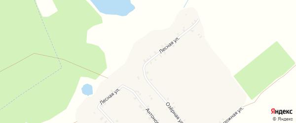 Лесная улица на карте села Ширяевка с номерами домов