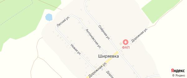 Антоновская улица на карте села Ширяевка с номерами домов