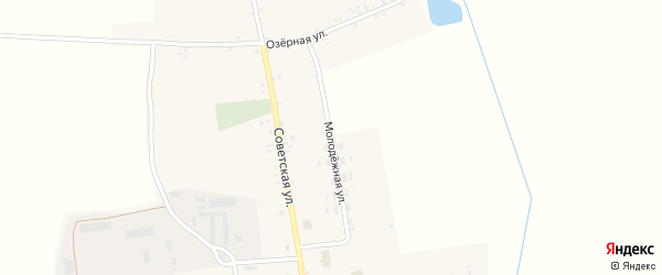 Молодежная улица на карте села Внуковичей с номерами домов
