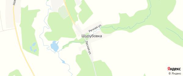 Карта деревни Шурубовки в Брянской области с улицами и номерами домов