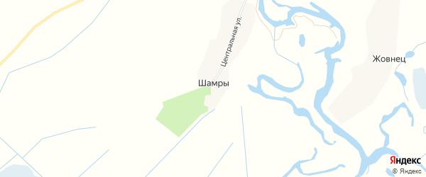 Карта поселка Шамр в Брянской области с улицами и номерами домов