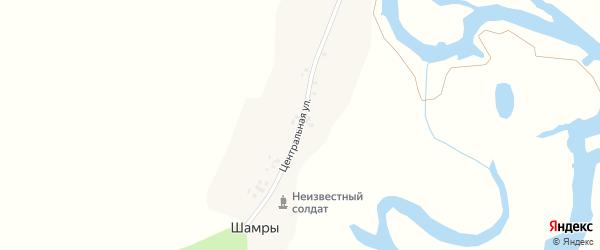 Центральная улица на карте поселка Шамр с номерами домов