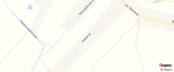 Новая улица на карте села Рогова с номерами домов