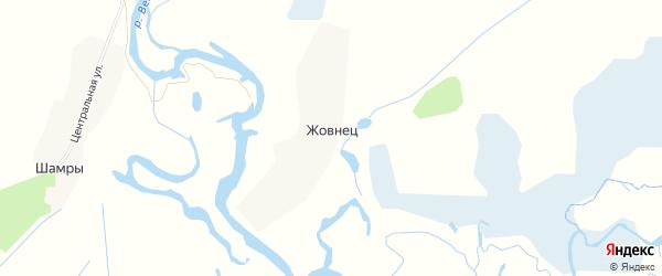 Карта села Жовнеца в Брянской области с улицами и номерами домов
