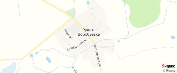 Карта деревни Рудни-Воробьевки в Брянской области с улицами и номерами домов