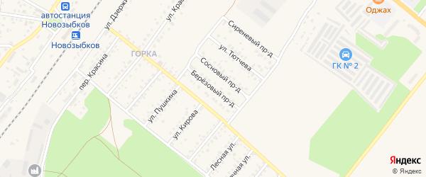 Березовый проезд на карте Новозыбкова с номерами домов