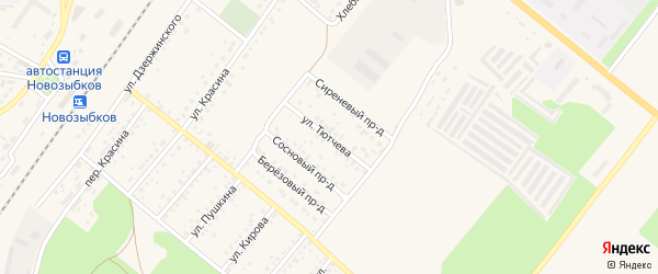 Улица Тютчева на карте Новозыбкова с номерами домов