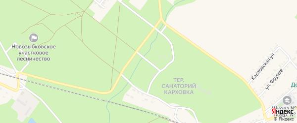Территория кладбище номер 3 Старообрядческое на карте Новозыбкова с номерами домов