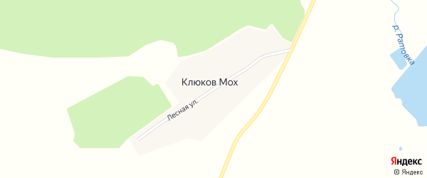 Лесная улица на карте поселка Клюкова Моха с номерами домов