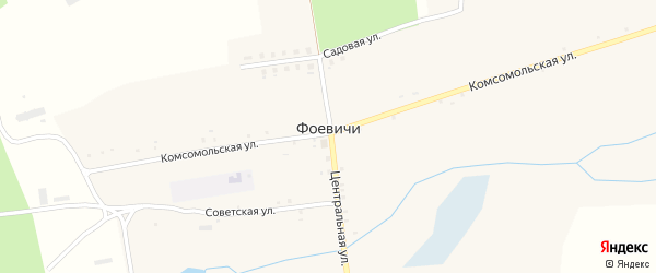 Полевая улица на карте села Фоевичи с номерами домов