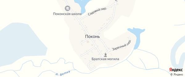 Заречная улица на карте деревни Поконь с номерами домов
