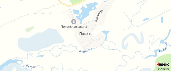 Карта деревни Поконь в Брянской области с улицами и номерами домов