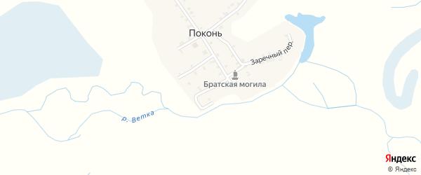 Речной переулок на карте деревни Поконь с номерами домов