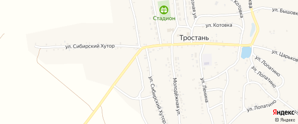 Улица Хутор Сибирский на карте деревни Тростани с номерами домов