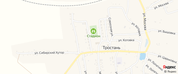 Новая улица на карте деревни Тростани с номерами домов