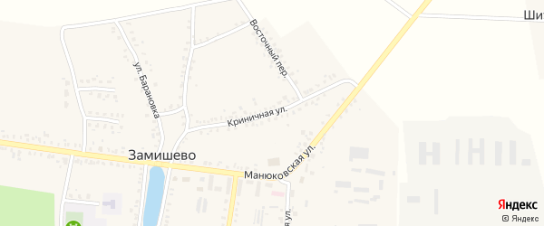 Криничная улица на карте села Замишево с номерами домов