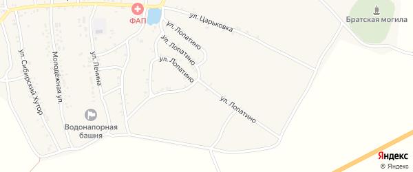 Улица Лопатино на карте деревни Тростани с номерами домов