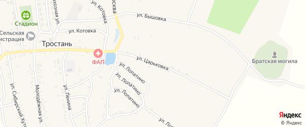 Улица Царьковка на карте деревни Тростани с номерами домов