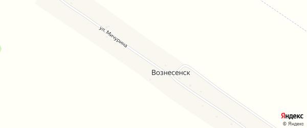 Улица Мичурина на карте поселка Вознесенска с номерами домов