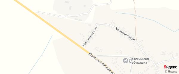 Молодежная улица на карте села Творишино с номерами домов