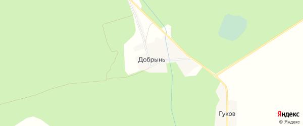 Карта деревни Добрыня в Брянской области с улицами и номерами домов