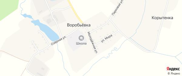 Молодежная улица на карте поселка Воробьевки с номерами домов