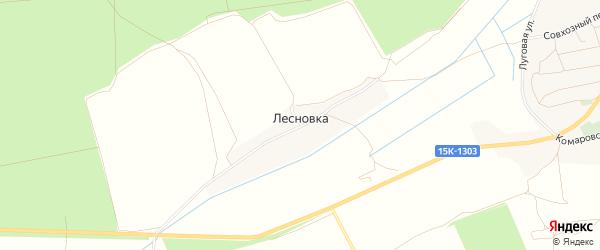 Карта деревни Лесновки в Брянской области с улицами и номерами домов