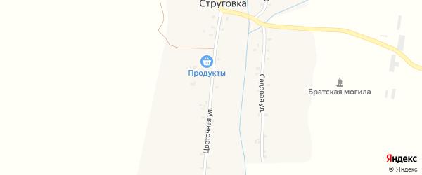 Цветочная улица на карте деревни Струговки с номерами домов