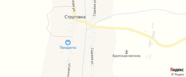 Садовая улица на карте деревни Струговки с номерами домов