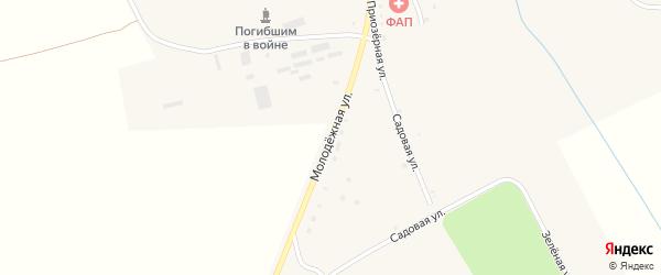 Молодежная улица на карте села Манюки с номерами домов