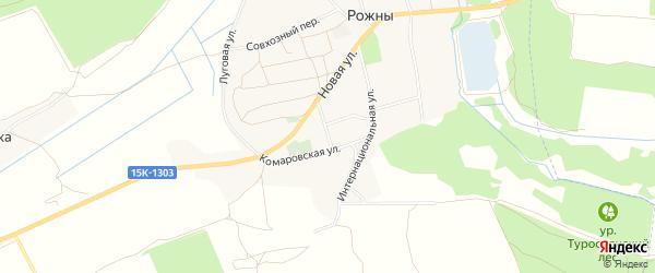 Карта села Рожны в Брянской области с улицами и номерами домов