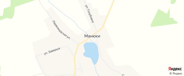 Карта села Манюки в Брянской области с улицами и номерами домов