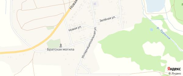 Интернациональная улица на карте села Рожны с номерами домов