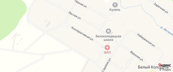 Кооперативная улица на карте села Белого Колодца с номерами домов