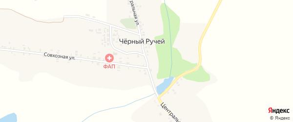 Центральная улица на карте деревни Черного Ручья с номерами домов
