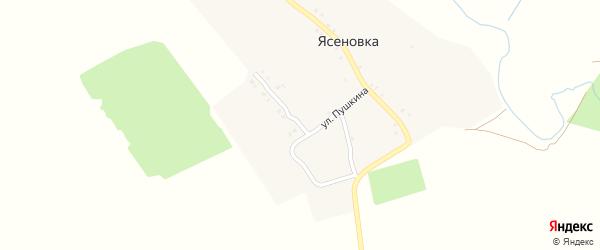 Улица Пушкина на карте деревни Ясеновки с номерами домов
