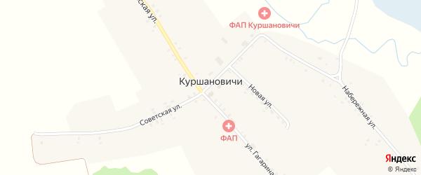 Новая улица на карте села Куршановичей с номерами домов