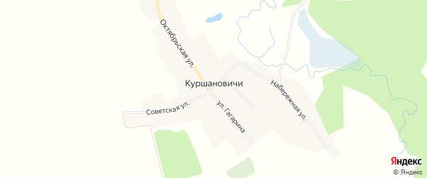 Карта села Куршановичей в Брянской области с улицами и номерами домов