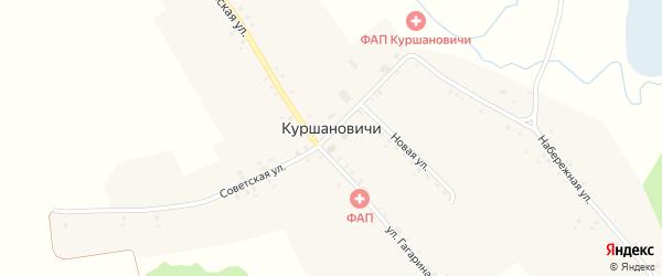 Улица Гагарина на карте села Куршановичей с номерами домов