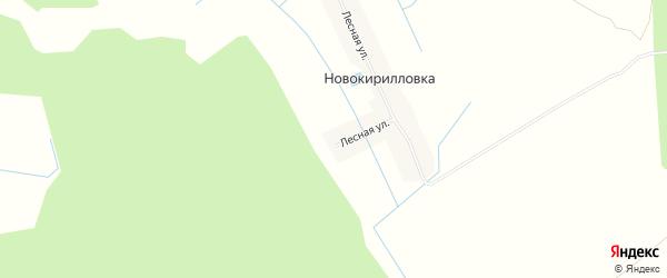 Карта поселка Ново-Кирилловки в Брянской области с улицами и номерами домов