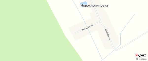 Лесная улица на карте поселка Ново-Кирилловки с номерами домов