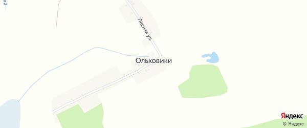Лесная улица на карте поселка Ольховики с номерами домов