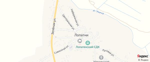 Центральная улица на карте села Лопатни с номерами домов