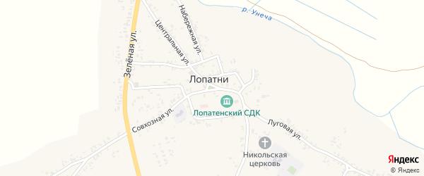 Южный переулок на карте села Лопатни с номерами домов