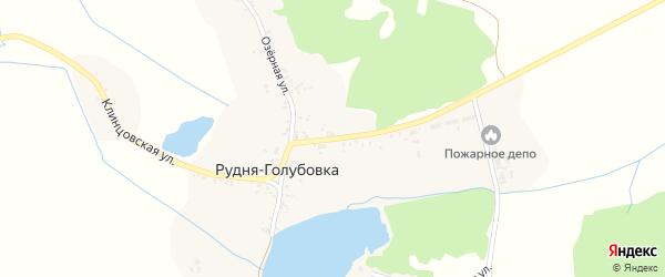 Клинцовская улица на карте деревни Рудни-Голубовки с номерами домов