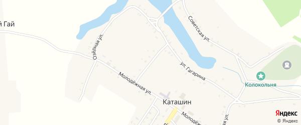 Молодежный переулок на карте села Каташина с номерами домов
