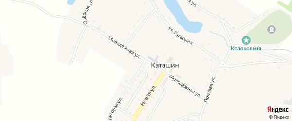 Молодежная улица на карте села Каташина с номерами домов